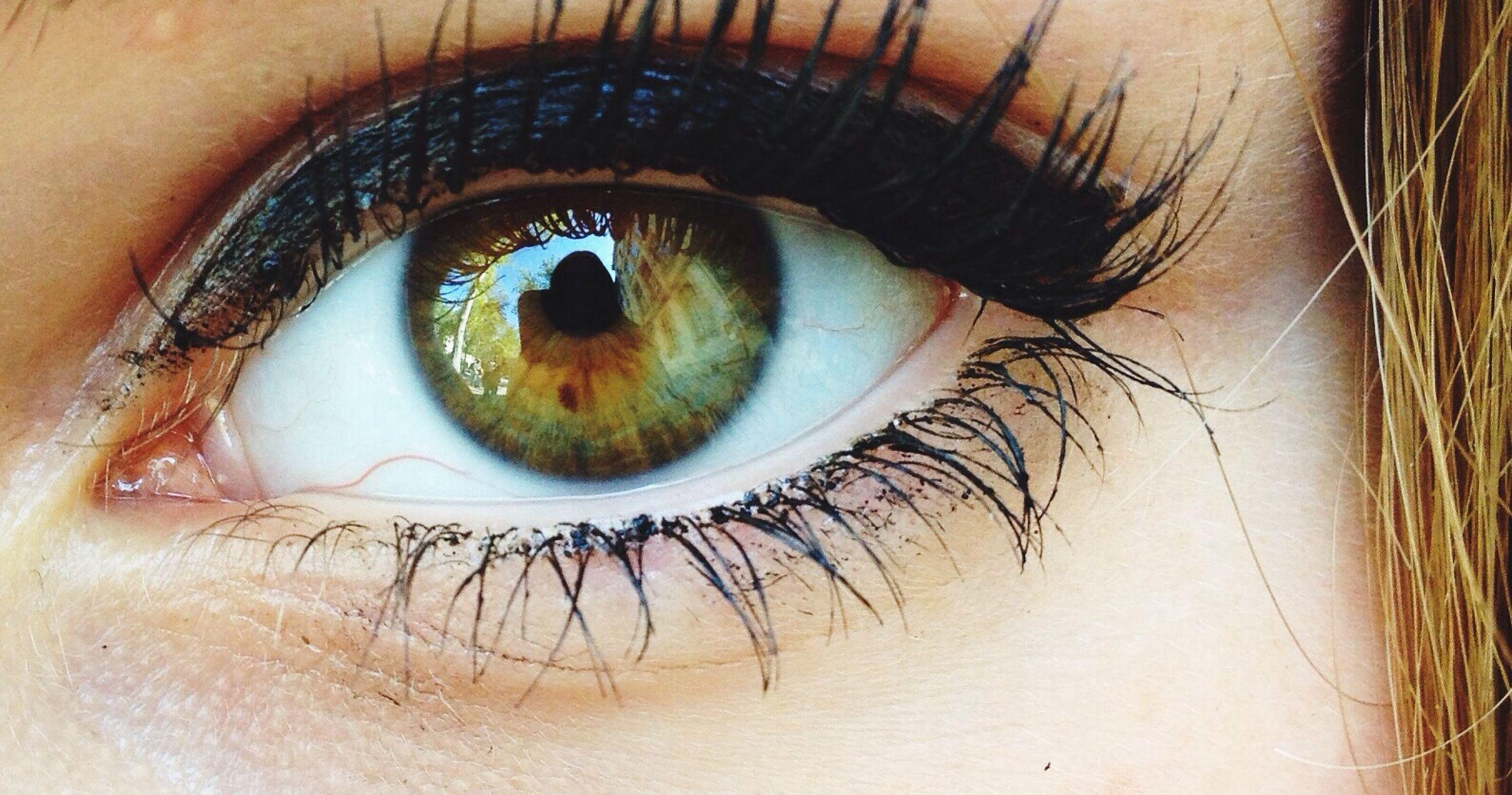 human eye, close-up, eyelash, lifestyles, indoors, eyesight, looking at camera, part of, portrait, human skin, sensory perception, unrecognizable person, person, human face, leisure activity, eyeball, extreme close-up