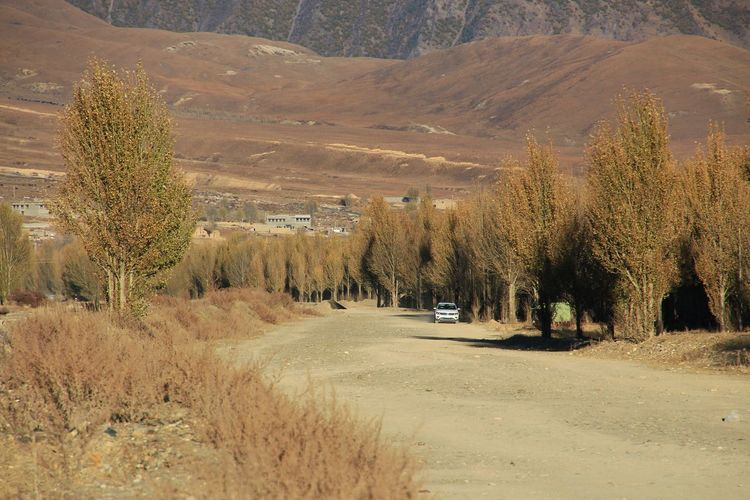 Road Plant Outdoors Scenics - Nature View Nature Scenic Famous Place Trees Country Countryside Scenery Day Transportation Outdoors Mode Of Transport Roadtrips Rural Tree Mountain Landscape Farmland Pine Tree Pine Wood