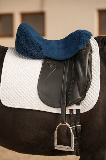 Dressage Horseriding Leather Saddle Black Cantle Dressage Saddle English Riding English Saddle Equestrian Equestrian Sport Equipment Girth Horse Horse Riding Horse Saddle Knee Roll No People Pommel Saddle Flap Saddle Pad Seat Seat Saver Stirrup White