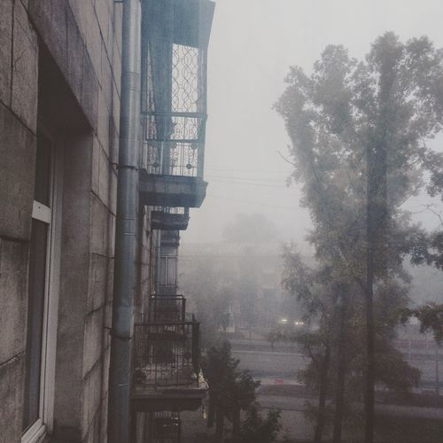 Architecture Bare Tree Building Exterior Building Story Built Structure City City Life Day Fog Foggy Mist No People Outdoors Residential Building Sky Tall - High Tower