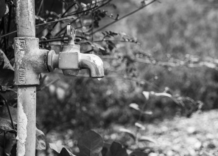 save water Tap Water Tap Water Save Water Blackandwhite Water Drop Drop Less Water Dry EyeEm Selects Water Protection Tree Close-up Deterioration Abandoned Bad Condition Latch Ruined Visual Creativity The Still Life Photographer - 2018 EyeEm Awards