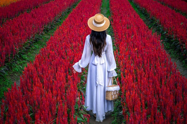 Full length of woman standing by red flowers