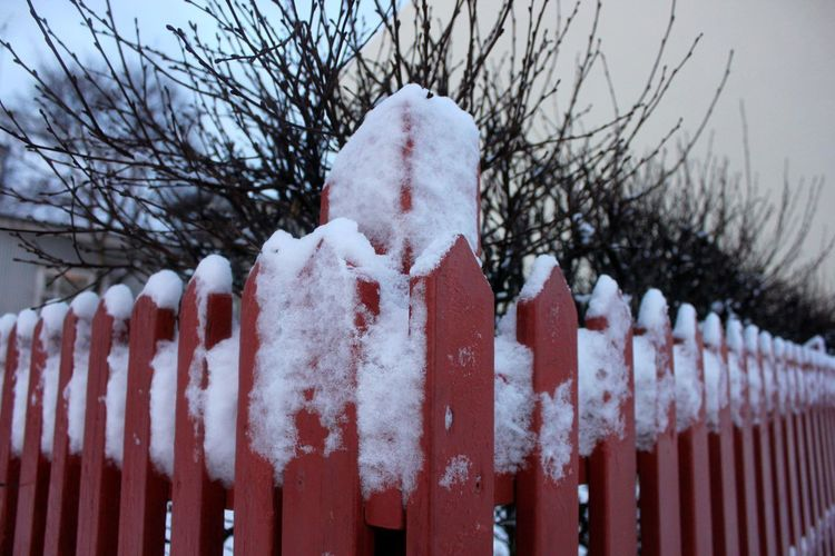 Fence Front Or Back Yard Outdoors Red Red Fence Snow Snow Covered Fenc Snow ❄