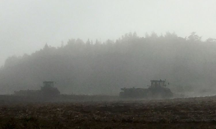 Harvesting potatoes on a frosty-cold, foggy morning in New Brunswick, Canada. Potato Harvesting Frost Fog Cold Temperature Freezing Misty Morning Tractor Harvester Farm Farm Life Rural Scene Business Trees Soil Potato Field Working Brown Color White Color Gray Color New Brunswick, Canada