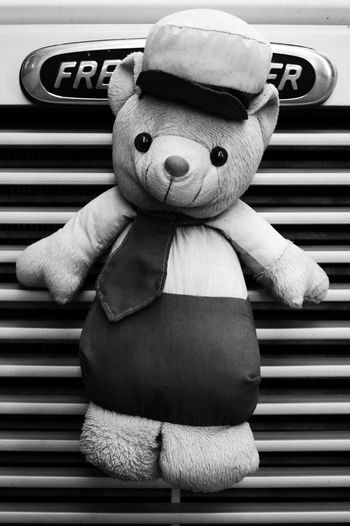Bear Teddybear Teddy Bear Teddy Toy Toys Black And White Black & White Truck Lines Lines And Shapes Popular Popular Photos EyeEm Best Shots EyeEm Gallery EyeEmBestPics Cute Happy Funny Freight Shakers Freightliner Freight Transportation Monochrome Photography The Drive MISSIONS: The Street Photographer - 2017 EyeEm Awards The Traveler - 2018 EyeEm Awards The Still Life Photographer - 2018 EyeEm Awards