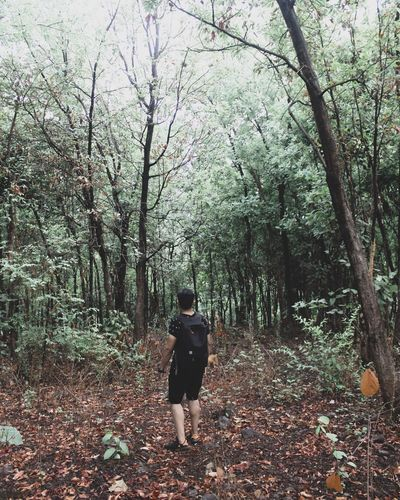 Believe in nature🌱 Tree Real People Plant Rear View Leisure Activity Lifestyles The Great Outdoors - 2018 EyeEm Awards Walking Growth Forest One Person Nature Outdoors Beauty In Nature Full Length Land Men Women Day The Way Forward The Traveler - 2018 EyeEm Awards