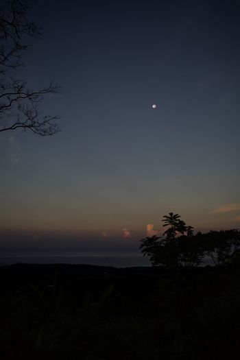 Sky Beauty In Nature Scenics - Nature Tree Tranquil Scene Tranquility Plant Moon Silhouette Nature Sunset Night No People Idyllic Astronomy Non-urban Scene Environment Space Outdoors Land Full Moon Moonlight Costa Rica