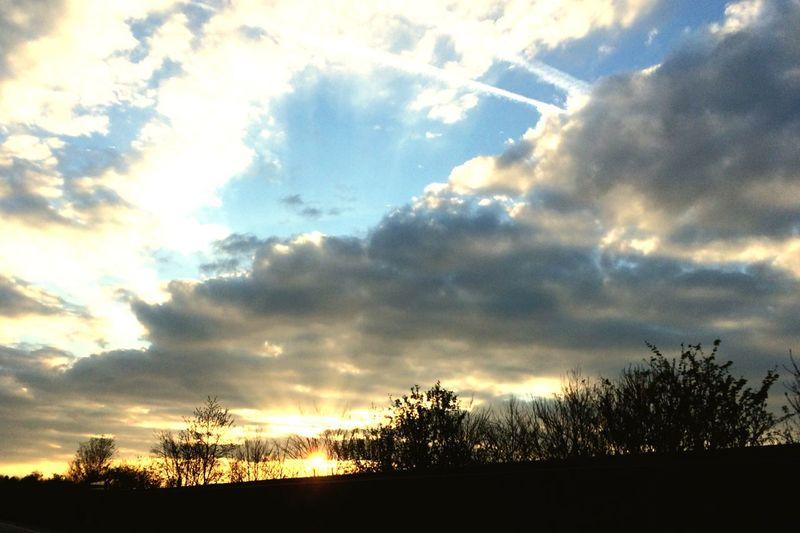Sky Cloud Tree