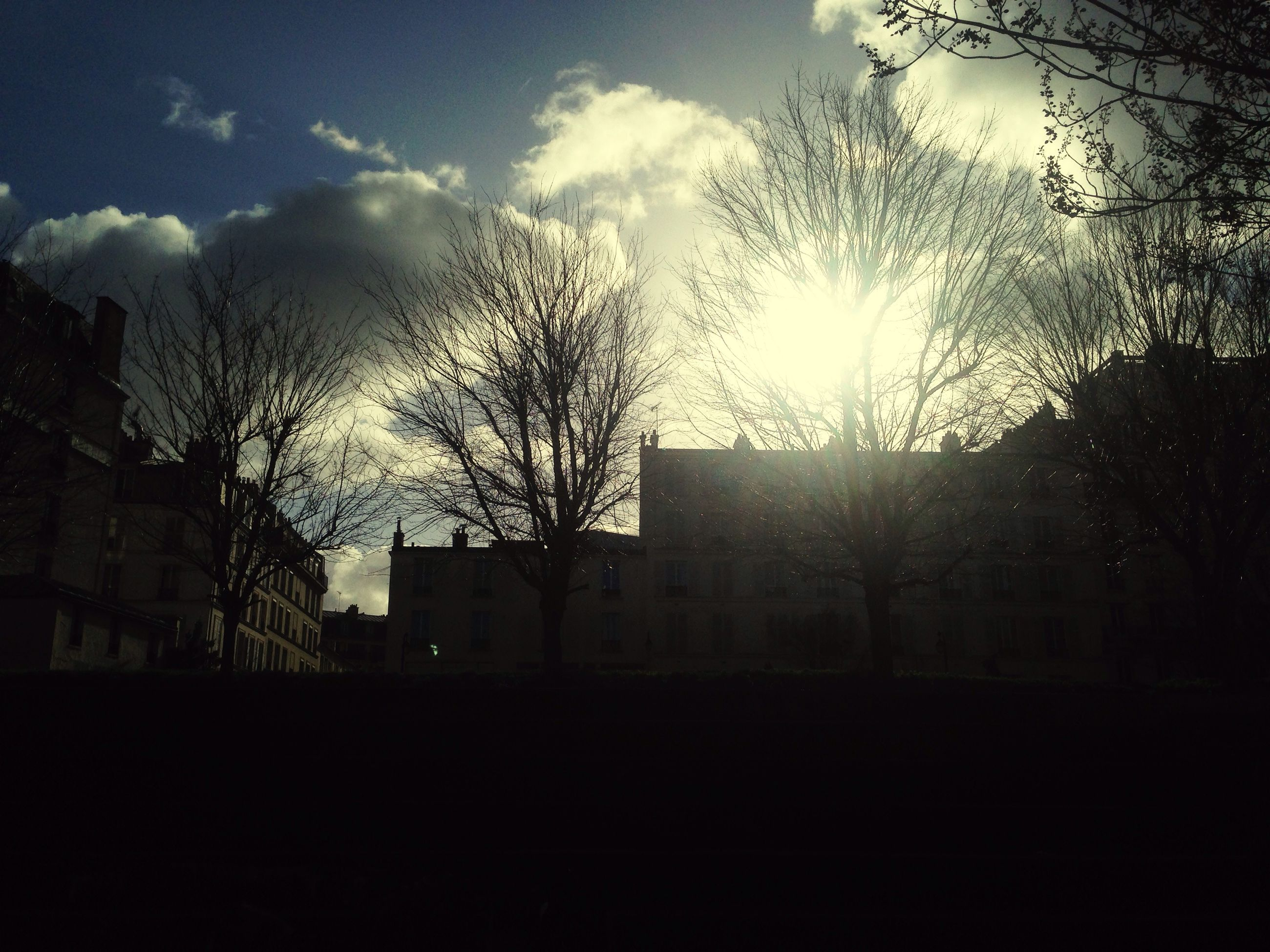 building exterior, architecture, built structure, silhouette, bare tree, sky, tree, sunset, house, cloud - sky, residential building, building, sunlight, residential structure, city, low angle view, dark, sun, no people, branch