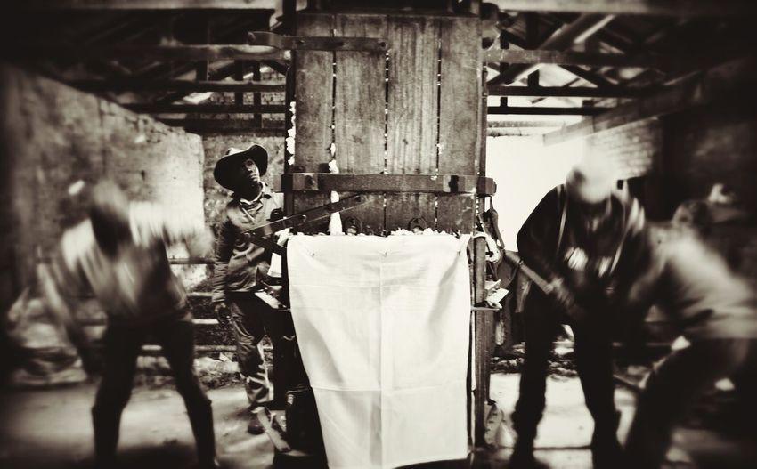 Clarensprophotographer Ianvanstraaten Peopleofafrica Karoo Sheepshearing