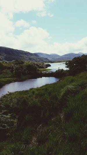 Killarneynationalpark Landscape