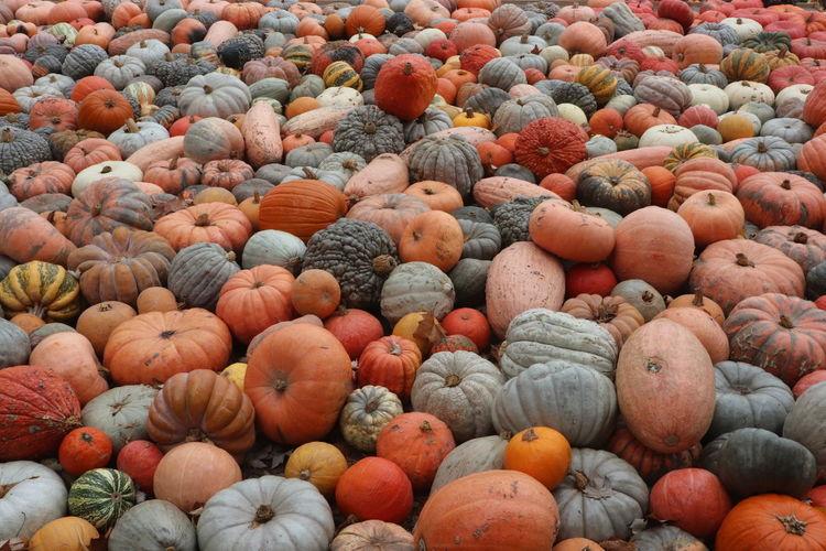 Full frame shot of gourd at market
