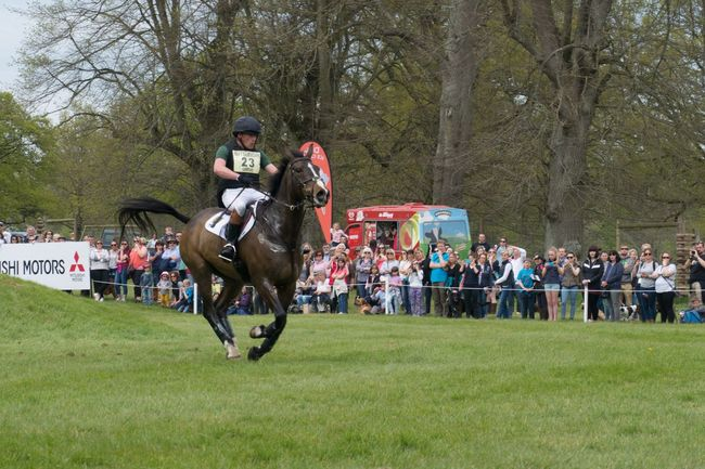 Badminton Cross Country Equestrian Gallop Grass Horse Jump Natural Fence Rider Sport