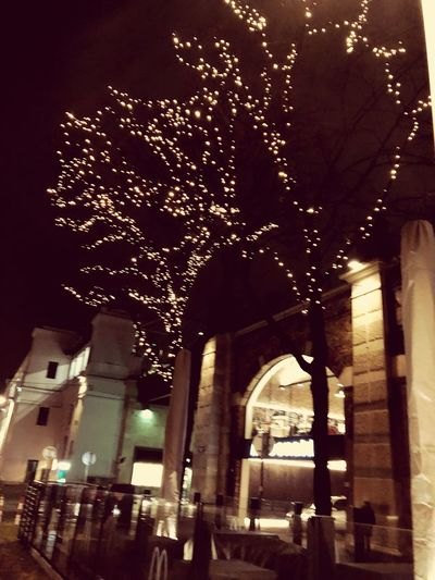 #light #iPhone #Vienna Illuminated Night Built Structure Architecture Building Exterior Arch Low Angle View Tree Outdoors No People Sky City