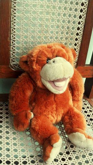 Macaco Pelucia Brinquedo Urso De Pelúcia  Donkey