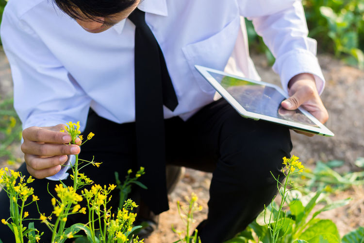 High angle view of businessman holding digital tablet while looking at flower in park