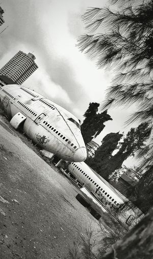 Airplanes Graveyard Sky Transportation Road Outdoors Cloud - Sky Tree No People Airplane Airplanes Graveyard Abandoned Thailand ExploreEverything Mobile Photography Personal Perspective The Week Of Eyeem Check This Out Fresh On Eyeem  Showcase March EyeEm Of The Week Hello World My Point Of View Black And White Photography Monochrome Planes In The City The Great Outdoors - 2017 EyeEm Awards The Street Photographer - 2017 EyeEm Awards