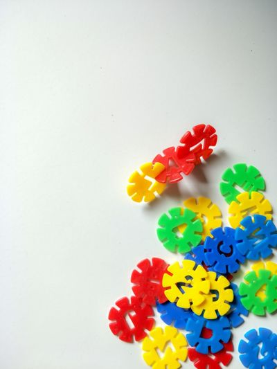 High angle view of multi colored flowers on table