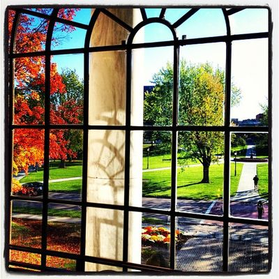 Grass Is Greener on The Other Side. #btv #vt #uvm University Vermont_scenery Window 802 Iphoneonly Waterman Photooftheday Igharjit Picoftheday Vermontbyvermonters Vermont Vt_scene Vermont_scene Instamood Igvermont Bestoftheday Igvt Vt_landscape Instagood Webstagram Vt Btv Uvm Picture Vt_scenery