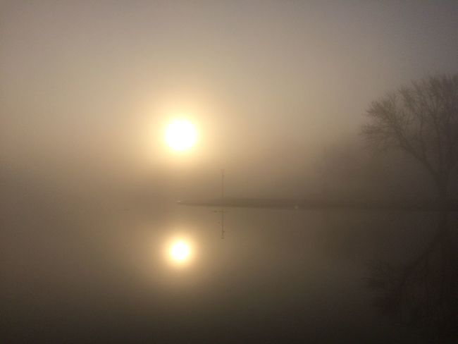 HUAWEI Photo Award: After Dark Beauty In Nature Fog Idyllic Nature No People Outdoors Plant Reflection Scenics - Nature Silhouette Sky Sun Sunlight Sunset Tranquil Scene Tranquility Tree Water