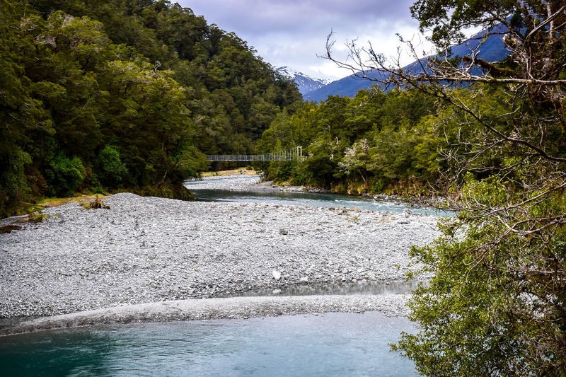 Scenic views at the blue pools. Blue Pools Walk EyeEm EyeEm Best Shots - Landscape Beauty In Nature Cloud - Sky Day Flowing Flowing Water Forest Growth Motion Mountain Nature New Zealand No People Outdoors Plant River Scenics - Nature Sky Tranquil Scene Tranquility Tree Water Waterfront