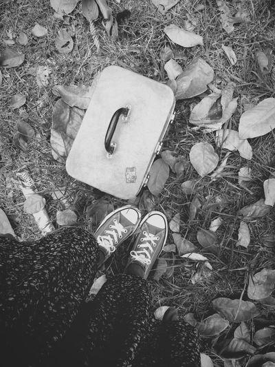 Y voy por el mundo, atravesando sentimientos sin número, saltando sobre el charco de la felicidad y bailando bajo la lluvia. Feliz Bendecida