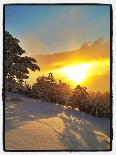 -10ºC Y Bajando... #esquídemontaña #amanecer #sunrise #skimountaineering #beforework #peñalara #cotos #snowstorm #sinfiltros #gasss #mountain #ilovemountain #detalles