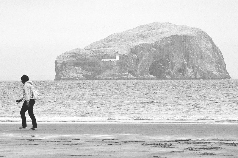 Bass Rock Beach Beach Life Beach Photography Beachphotography Lifestyles Light House North Berwick Beach,Scotland Outdoors Rock Formation Scotland Tourism Travel Destinations Vacations Volcanic Island Volcanic Landforms Volcanic Landscape Volcanic Rock Walking Woman