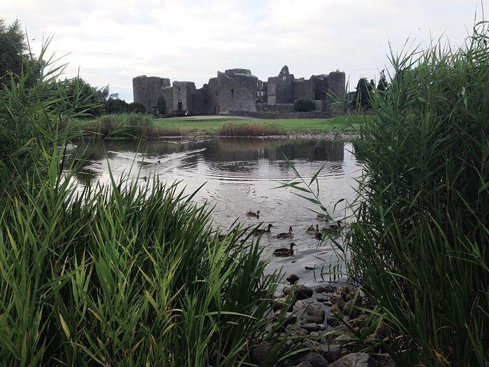 Ducks Castle