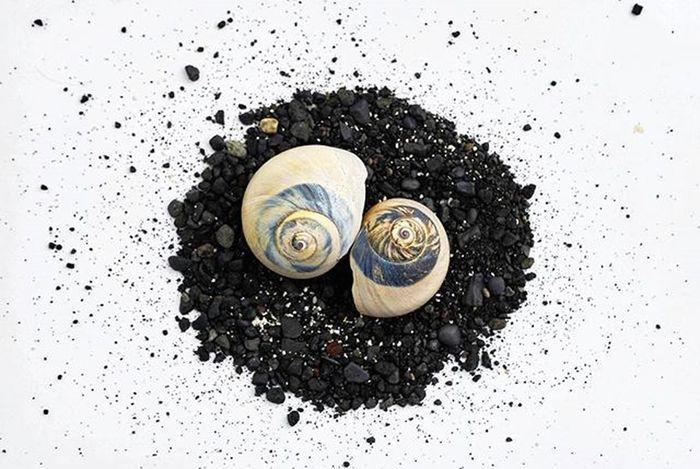 Spiral https://goo.gl/vyYNsw Reimerpics Ocean Seashell Sea Nature Photography Canada Ontario Shell Sand Blacksand