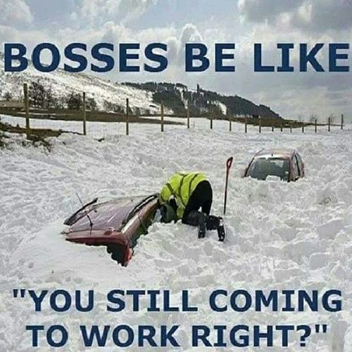Repost Winter Work Boss