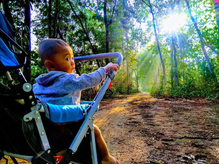 Rear view of boy sitting in forest