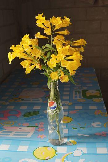 Blooming Bottle