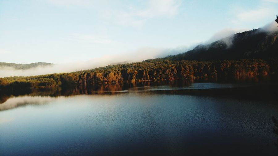 EyeEm Selects Tree Water Mountain Lake Autumn Pinaceae Reflection Forest Fog Sky
