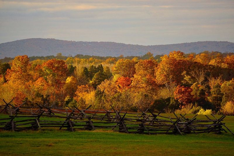 Well this update sounds promising! Autumn Autumn Colors Autumn Leaves Colors Of Autumn Autumn Scenes Sunlight Magic Hour Golden Hour Sunset Valley Scenic View Landscape Nature EyeEm Nature Lover Historic Virginia Manassas National Battlefield Park