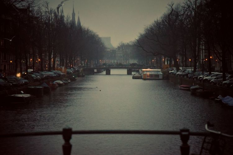 Vanishing Point Early Morning Misty Morning Wintertime Winter Moody Eye4photography  EyeEm Gallery Amsterdam Canal Amsterdam Cityscape Tree Cold vanishing point From Where I Stand Travel Destinations Travel Photography EyeEm Learn & Shoot: Leading Lines Morning Light City Tree Winter Water Fog Cold Temperature Sky Rainy Season Arch Bridge Diminishing Perspective Urban Scene