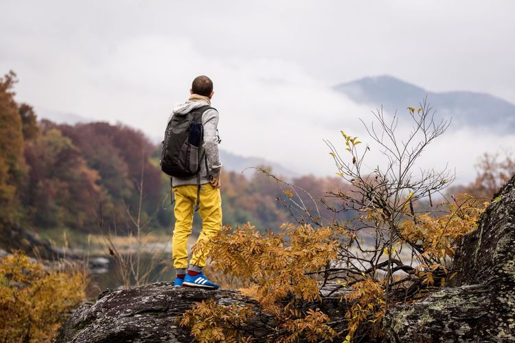 Watching the last autumn colors fade away Japan Japan Photography Saitama Nagatoro Autumn Colors Autumn Autumn Leaves Hiking One Person Nature Outdoors Adventure Mountain Beauty In Nature Landscape Day Forest Fire Fall Clouds Cloud Fog Foggy Morning Foggy