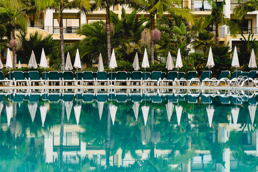 Pool with umbrellas Madeira Island Architecture Building Building Exterior Built Structure Day In A Row Luxury Nature No People Outdoors Palm Tree Plant Pool Reflection Swimming Pool Tourist Resort Tree Tropical Climate Water Waterfront