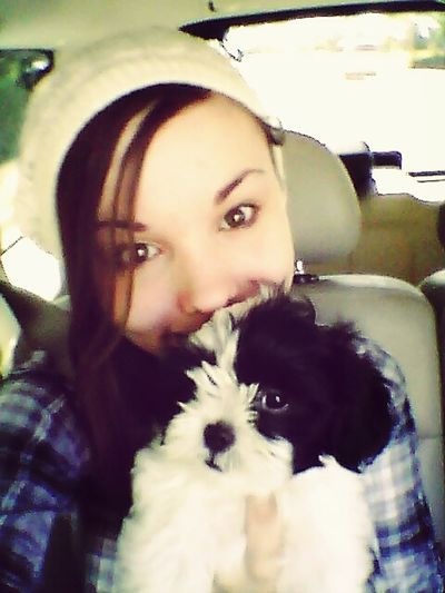 This adorable little puppy! Puppy Animals Selfie CarRides