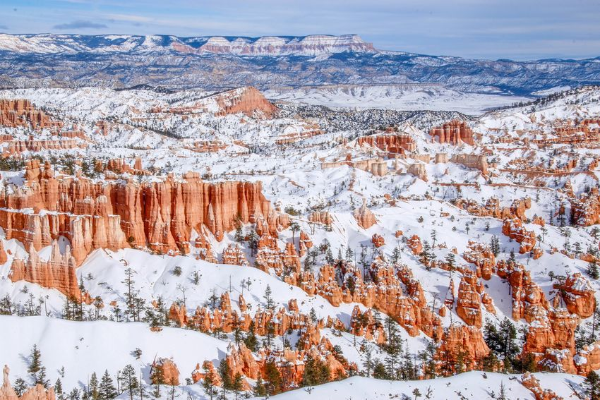 Bryce Canyon National Park Beauty In Nature Landscape Travel Destinations National Park Bryce Canyon Hoodoos