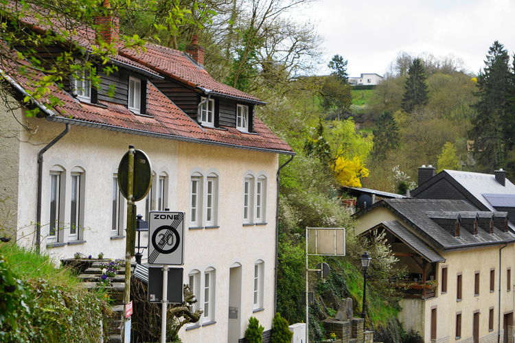 Houses on the hill Luxembourg Travel Photography Architecture Building Building Exterior Built Structure City Day Green Color Growth House Low Angle View Nature No People Outdoors Plant Residential District Roof Row House Sky Town Travel Destinations Tree Vianden Window