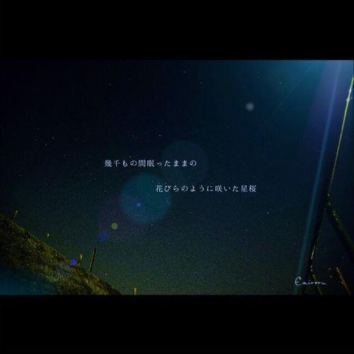 流星の夜。 EyeEm Nature Lover Night Star Night Sky