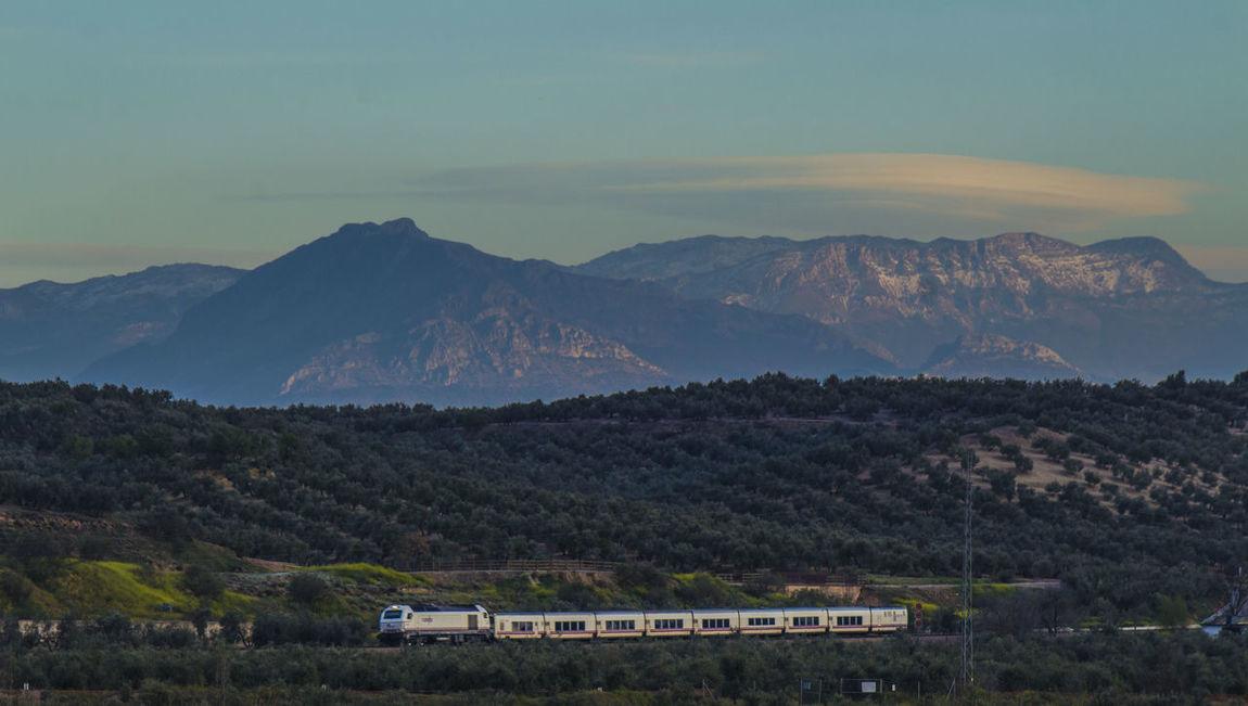 Cerca de la ciudad milenaria de Cástulo Andalucía Nature Castulo Jaen Province Linares Primavera