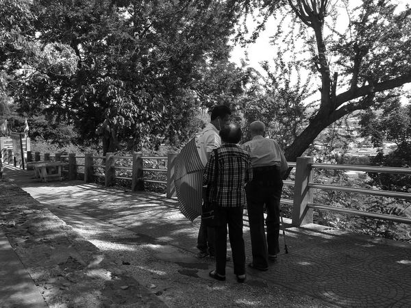Couple Old Couple Oldman Old Woman Long Life Umberella Walking Around Happiness Happy People Happa Happa Grandma Grand Parents