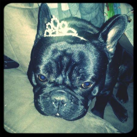 My Princess!♥
