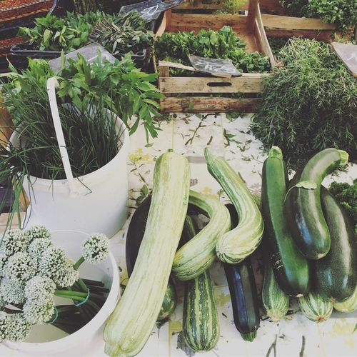 vegetables, Vegetable High Angle View Green Color No People Variation Growth Plant Freshness Choice Healthy Eating Food Day Outdoors Nature Close-up market Market Wochenmarkt Markt Gemuese Marktgemuese Samstag Berlin Gruen Green Colour