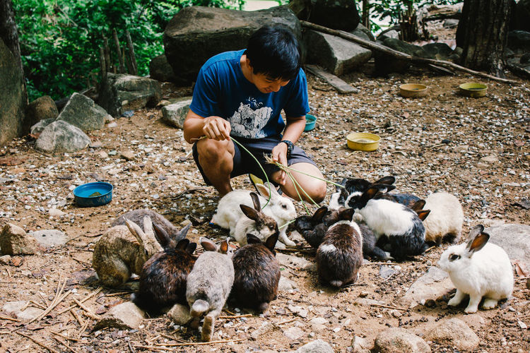 Full length of man with rabbits outdoors