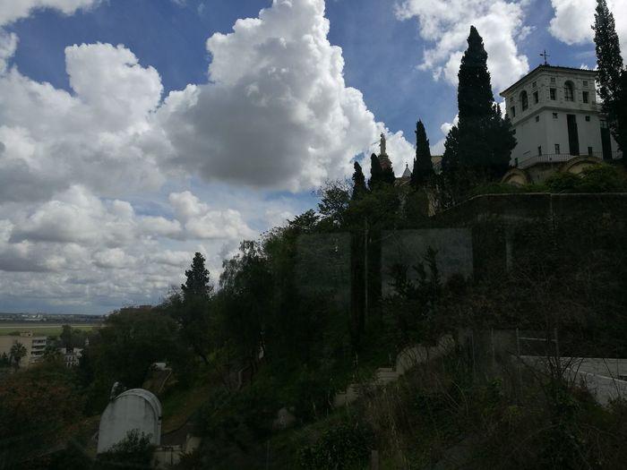Sevilla Spain Miarma Going Remote Tree Sky Architecture Cloud - Sky Castle Medieval Fortress