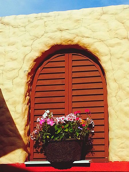 Flower Pot - Summertime brunch at a mexican restobar in Kelowna was just splendid. Blue skies, colourful and quaint courtyard, cool breeze, covktails, fresh salsa & nachos. What a perfect afternoon! Summer Mexicanstyle Window Flowerpot Textures And Surfaces