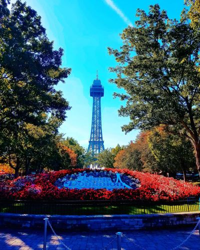 KingsDominion Fall Fall Season Falltrees Eiffel Tower Built Structure Eiffeltowerview Architecture Travel No People Sky Day Out Theme Parks Themepark Park Virginia Outdoors Cityscape Tree Day Travel Destinations Rideallday Fall2017 USA Photo Of The Day First Eyeem Photo